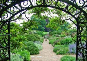 cursus tuinieren met onderhoud van je tuin en tuinontwerpen